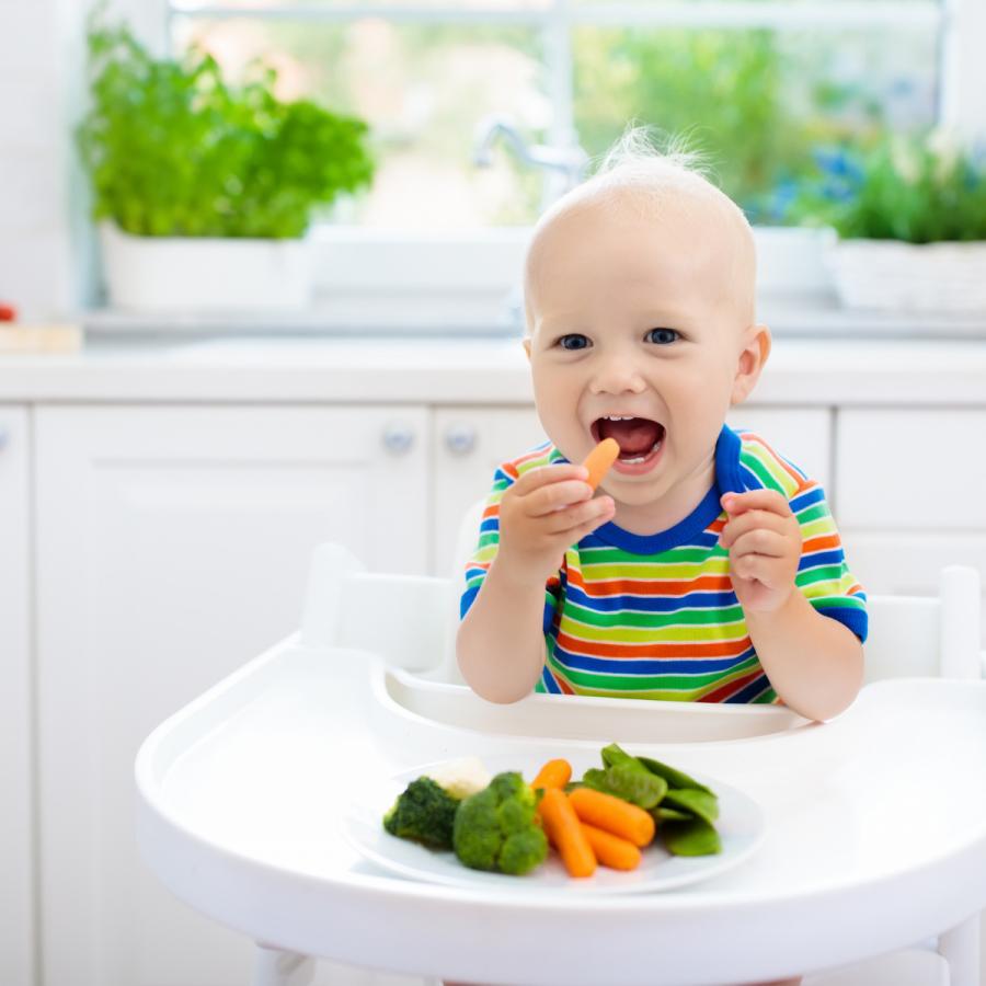 Kinderdietist baby groente leren eten